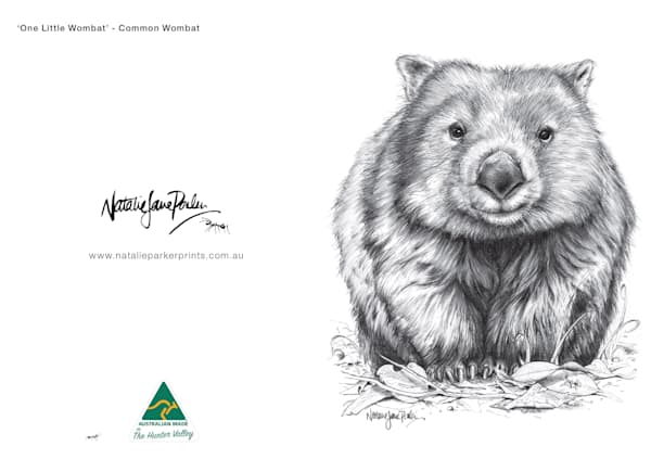 Sketches Greeting Card Set of 5 - Featuring Australian Native Wildlife