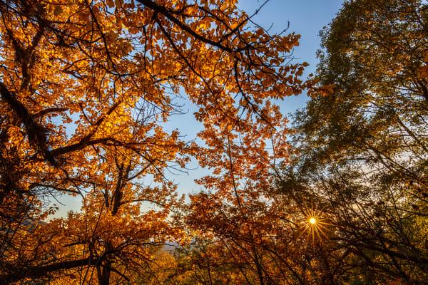 Sun Peak Fall