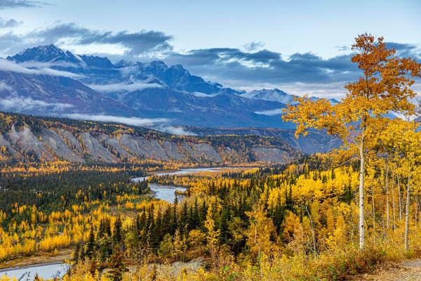 Mat River Autumn