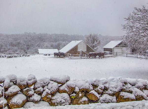 Brookside Farm Snow Art | Michael Blanchard Inspirational Photography - Crossroads Gallery