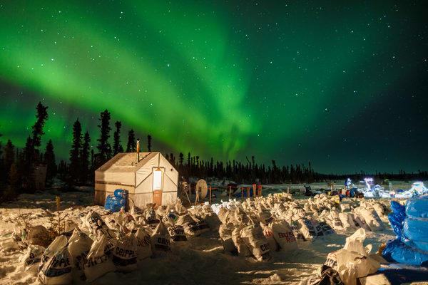 Cripple Lights Iditarod