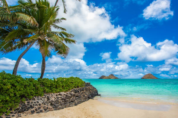 Waialae Point | Sm128 Art | Pictures Plus
