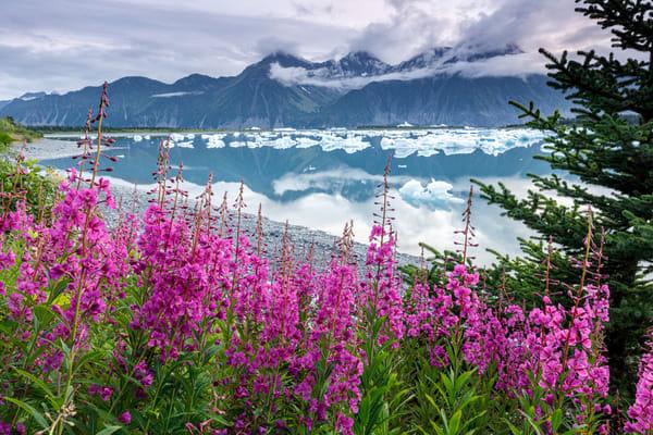 Bear Lagoon Fire & Ice