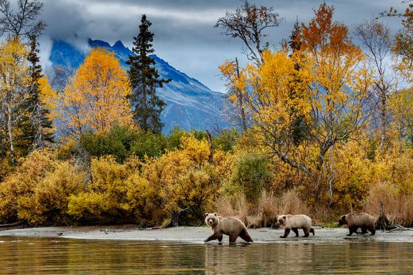Jeff's Best of Alaska