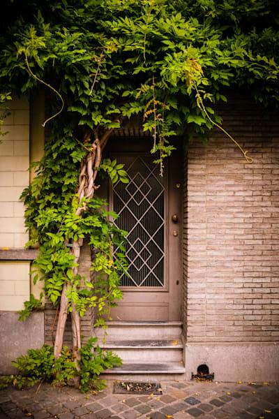 Doors of Ixelles No. 9, Brussels, Belgium 2018