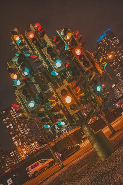 The Magic Light Tree Art | Martin Geddes Photography