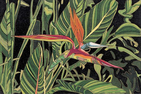 Bird Of Paradise   Hand Colored Etching  Art | Patrick M. Parise