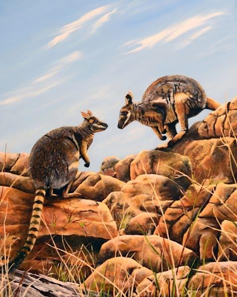Yellow Footed Rock Wallabies (Framed) Art   Ebony Bennett Fine Art