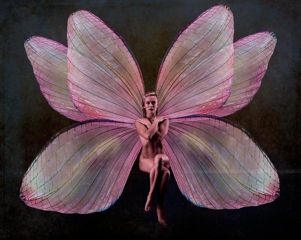 Bri: Pink Fairy