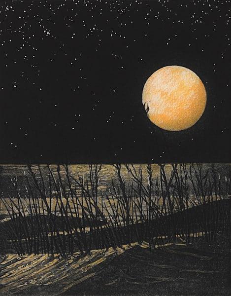 Wild Dunes  10 X 8  Etching Art | Patrick M. Parise