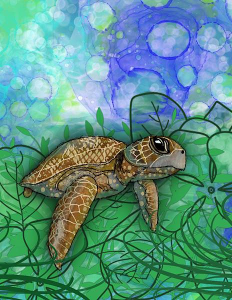 Sea Turtle Art | Lynne Medsker Art & Photography, LLC