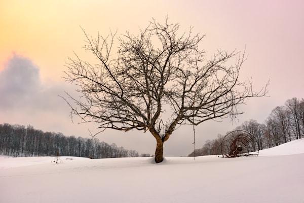 Winter Evening at Cloudland Farm by Rick Berk