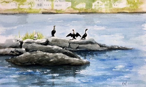 Cormorants on a Rock painting by Holly Whiting