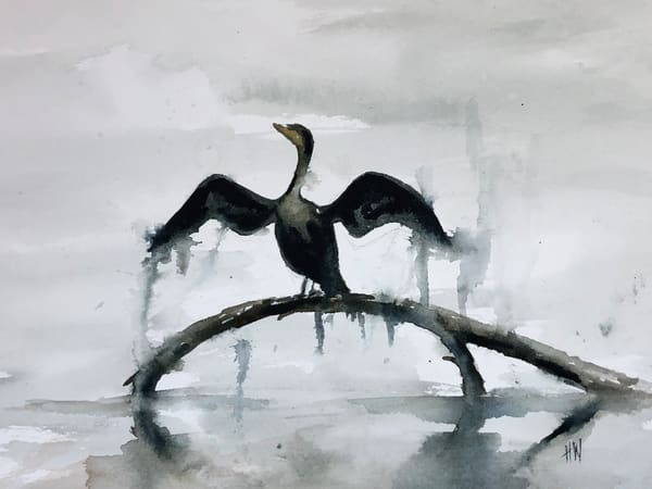 Cormorant watercolor painting by Holly Whiting