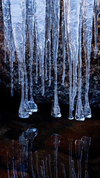 Ice Bells Over Water Art | Karen Hutton Fine Art