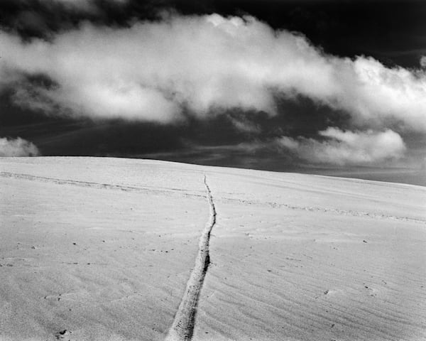 California Landscape Photography - Coastal Sand Dunes-Film