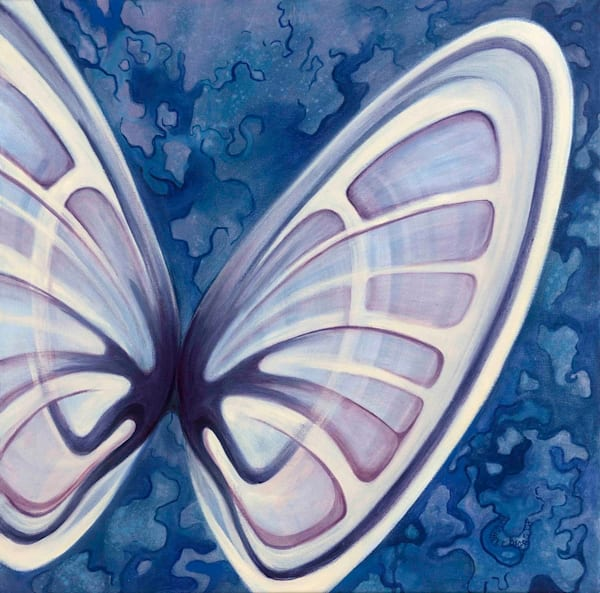 Butterfly Shell Art | Margaret Biggs Fine Art