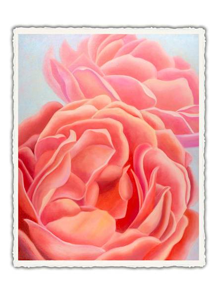 We Are Sisters - Coral Roses. Frameable Note Cards by the artist, Mary Ahern