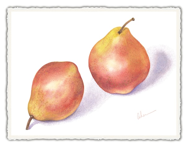 Red Pears. Frameable Note Cards by the artist, Mary Ahern