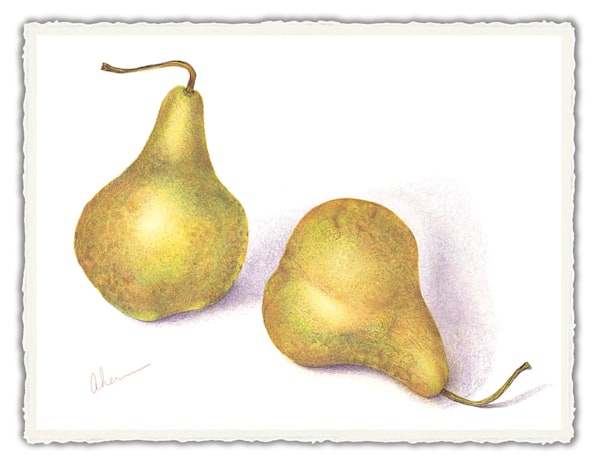 Green Pears. Frameable Note Cards by the artist, Mary Ahern