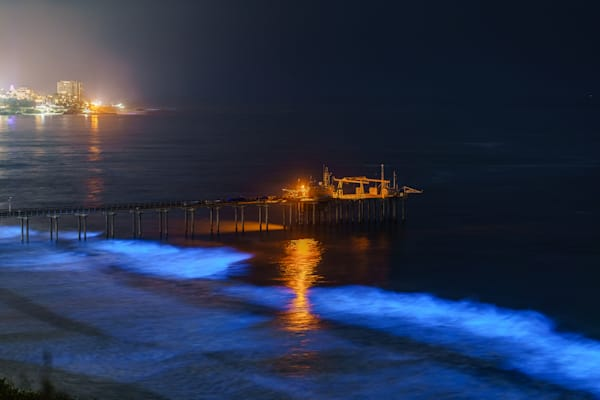 Scripps Pier, La Jolla Bioluminescence From Above Fine Art Print Art | McClean Photography