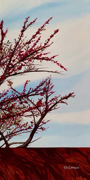 """Scottsdale Sky"" - Original Artwork by Emily Gilman Beezley"