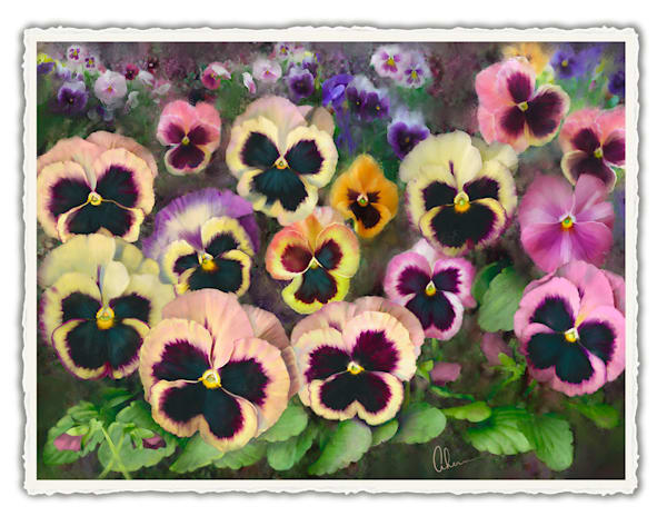 Pansy Field.  Frameable Note Cards by the artist, Mary Ahern