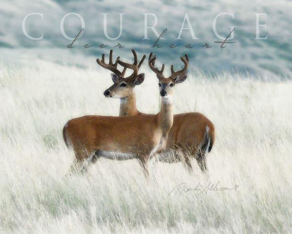 Courage Bucks Art