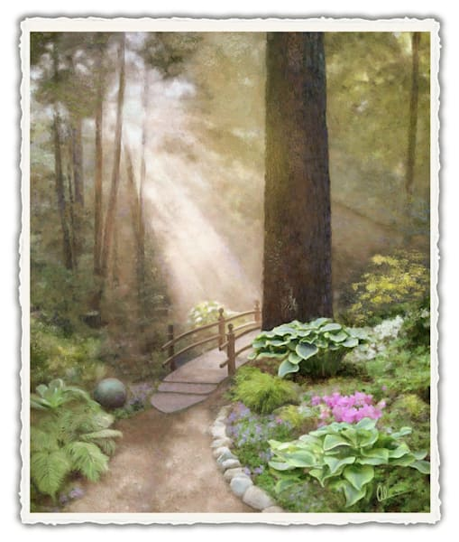 Woodland Sunshine.  Frameable Note Cards by the artist, Mary Ahern