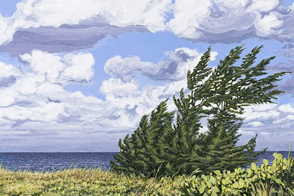 Wind Swept     Acrylic On Panel Art   Patrick M. Parise