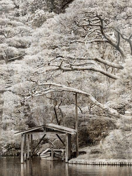 Garden In Tokyo Photography Art   Jim Graham Photography