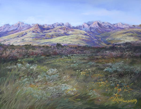Lindy Cook Severns Art | In the Softness of a Davis Mountains Summer, print