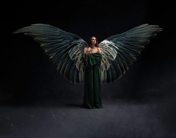 Erin the Winged Warrior Maiden