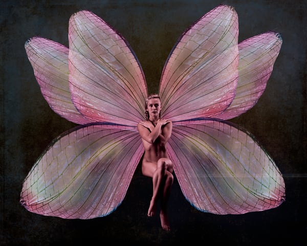 Bri the Pink Fairy