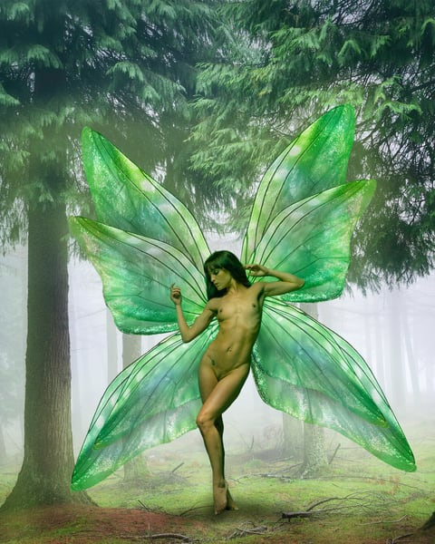 Green Fairy in the Woods