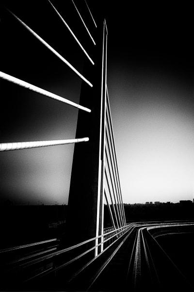 Photography by Kerri-Jo
