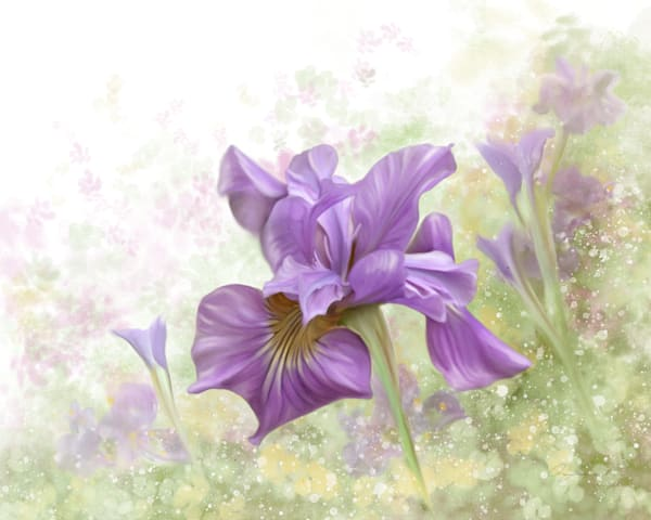 Fine Art Floral and Nature paintings: Shop prints by An Artist's View Photography