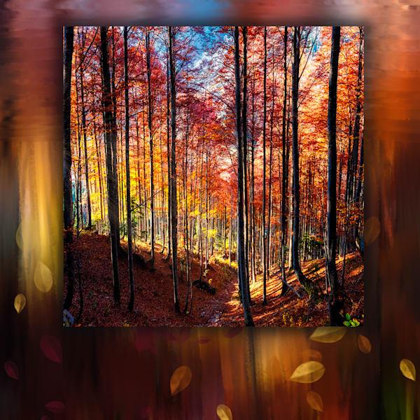 Leaves Falling In The Red Forest Art | Karen Hutton Fine Art