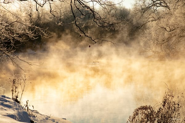 Disappearing  Ducks On Steamy Spring River With Ice 3389 Art | Koral Martin Fine Art Photography