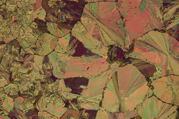 Wild Granite Rose (Hippuric Acid) Art | Carol Roullard Art
