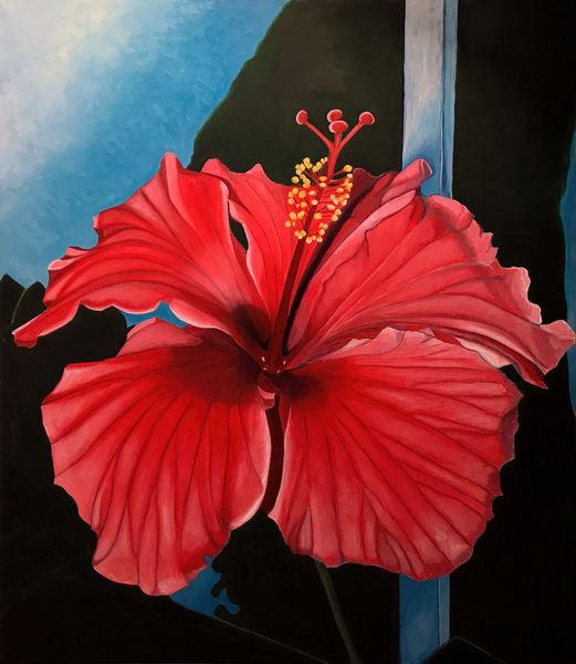 Hibiscus Art | Maciek Peter Kozlowski Art