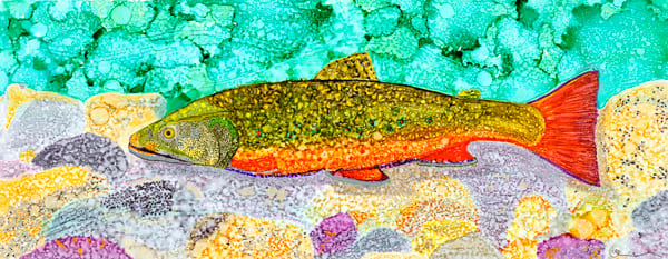 Brook Trout Art | Rudolph Fine Art