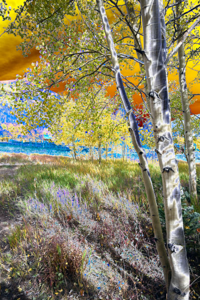 Ashcroft Aspen Photography Art | Silver Spirit Photography