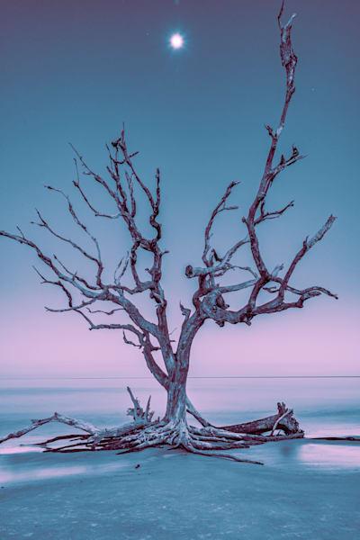 Lunar Altar Photography Art | kramkranphoto
