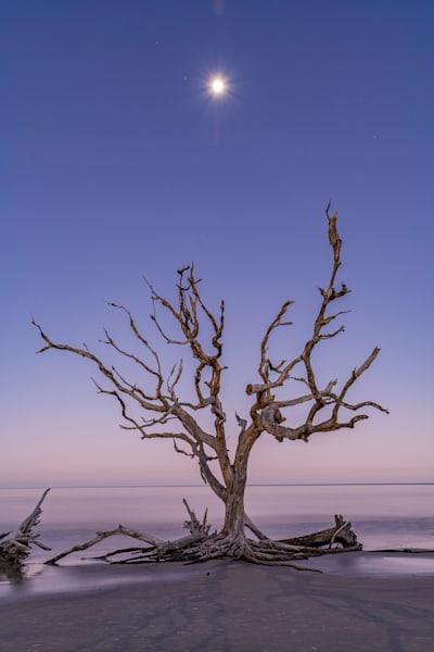 Lunar Tide Photography Art | kramkranphoto