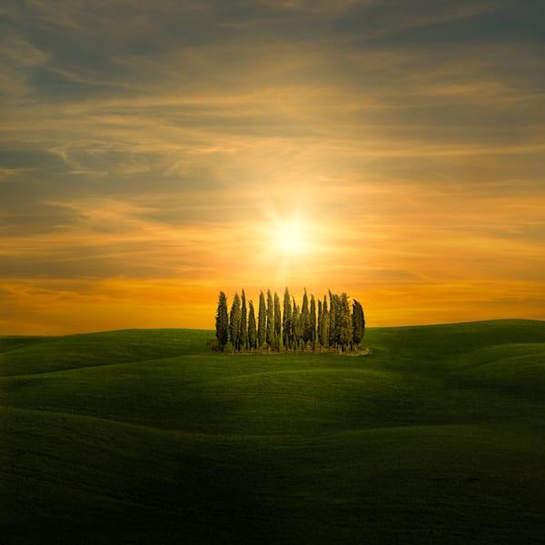 Harv Greenberg Photography - Under the Tuscan Sun