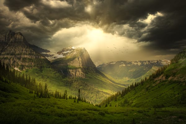 Harv Greenberg Photography - Paradise Valley II
