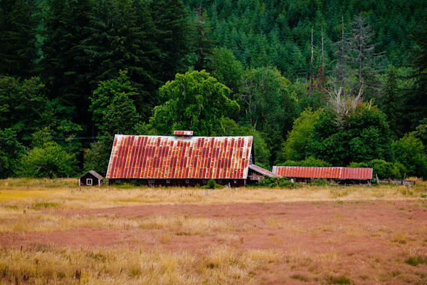 Old Barn, Ferrier Road, Lewis County, Washington, 2016
