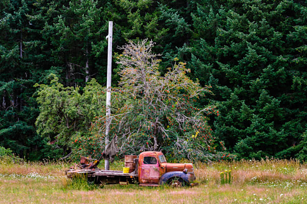 Old Dodge Flatbed Truck, Claquato, Washington, 2016