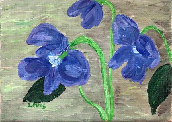 Violets 3